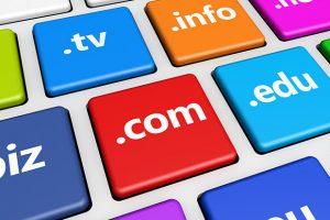 Memilih domain name