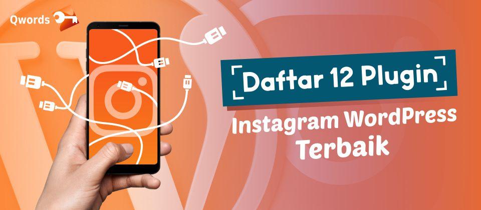 daftar 12 plugin instagram wp
