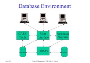 Database Enviroment