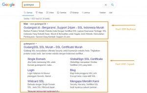 Hasil SERP Google