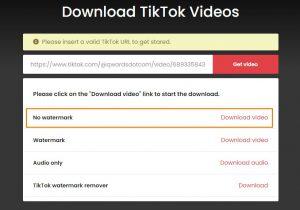No Watermark TikTok Video