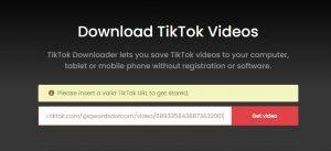 TikTok Videos ttdownloader