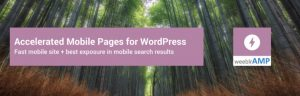 AMP on WordPress