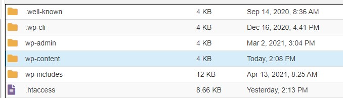 folder wp-content